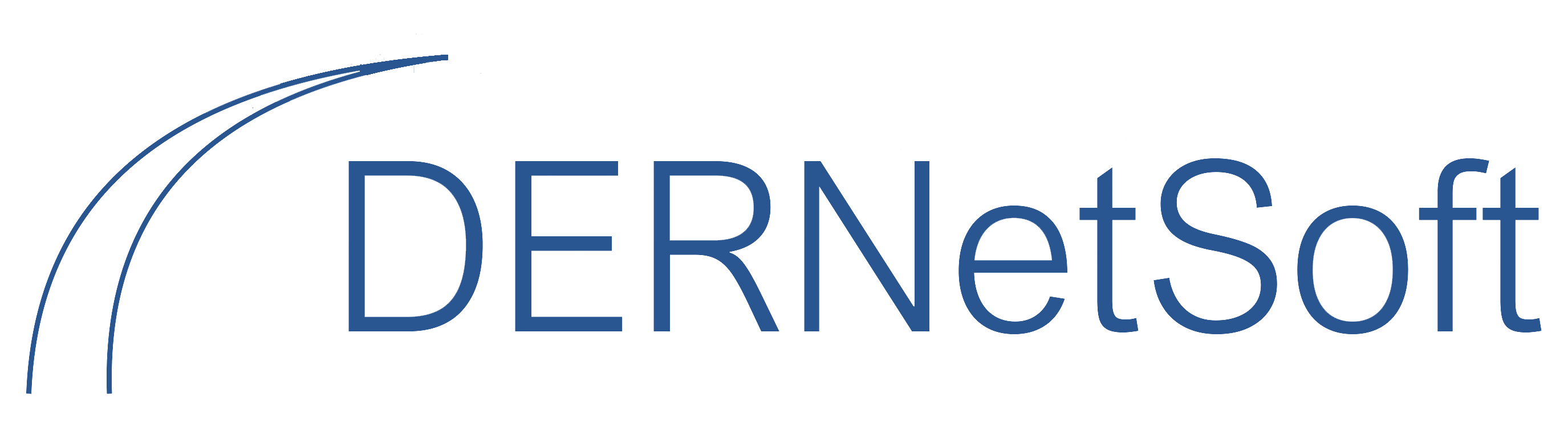 DERNetSoft Inc.